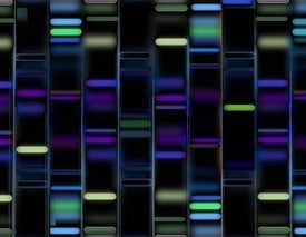 We Need More Diversity in Our Genomic Databases