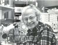 Remembering David Hubel (February 27, 1926 – September 22, 2013)