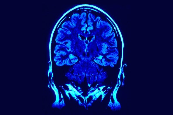 What Does It Mean When We Call Addiction a Brain Disorder?