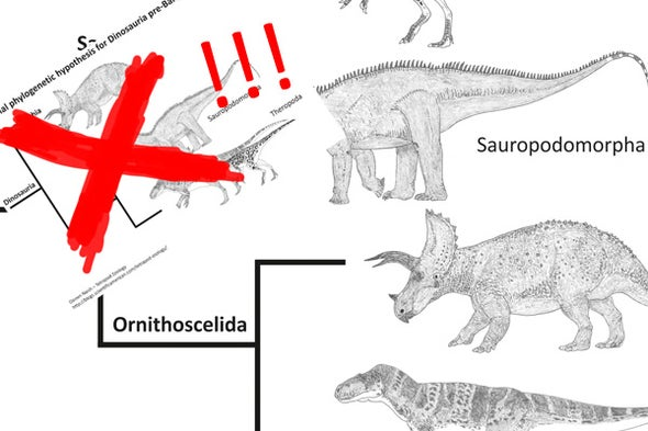Ornithoscelida Rises: A New Family Tree for Dinosaurs