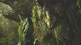 Treebeard Joins the NRA