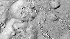 Cassini Reveals That Enceladus Is Embraced by a Web of Cracks