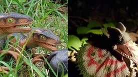 25 Years after <i>Jurassic Park,</i> Part 2