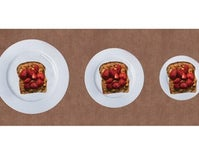 Smaller Plates Don't Make Meals Look Bigger When You're Hungry