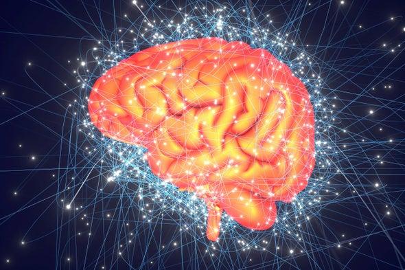 The Neuroscience of Creativity: A Q & A with Anna Abraham