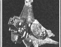Aerial Spy, 100 Years before Drones