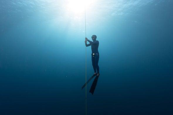 Mindfulness Under the Sea