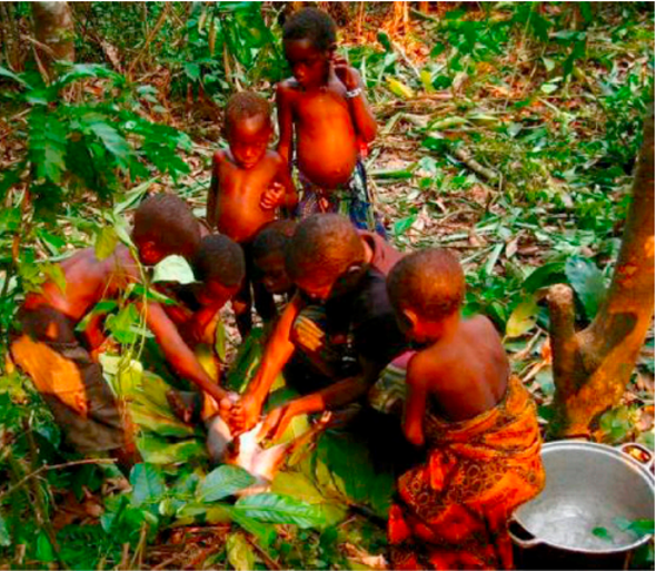 The Microbiomes of Indigenous Peoples Are Different--Does It Matter?