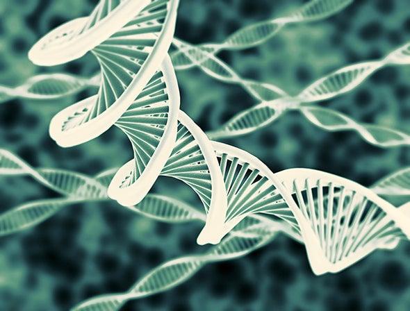 Are Humans Apex Predators or Genome Conservers?