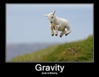 Why Can't Gravity Believers and Skeptics Get Along?