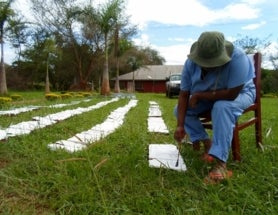 #FieldworkFriday: Field Research Preparations – Bricks and traps