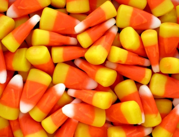 Don't Let Greedy Trick-or-Treaters Hijack Your Halloween Stash!