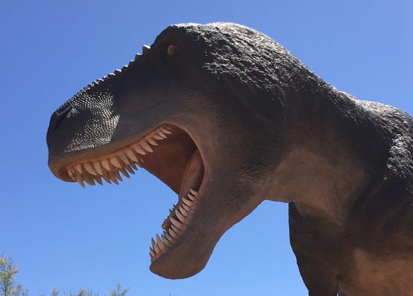 What Did Dinosaur Tongues Look Like?