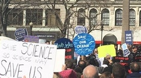 Why I'm Marching for Science