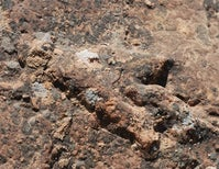 Where Are Utah's Triassic Dinosaurs?