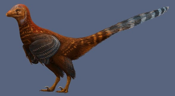 Paleo Profile: The Jianianhua Dragon