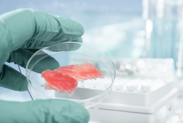 Lab-Grown Meat Is on the Way