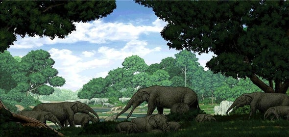 Paleo Profile: The Invisible-Tusked Elephant