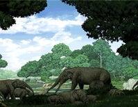 Paleo Profile: The Invisible-Tusked Elephant
