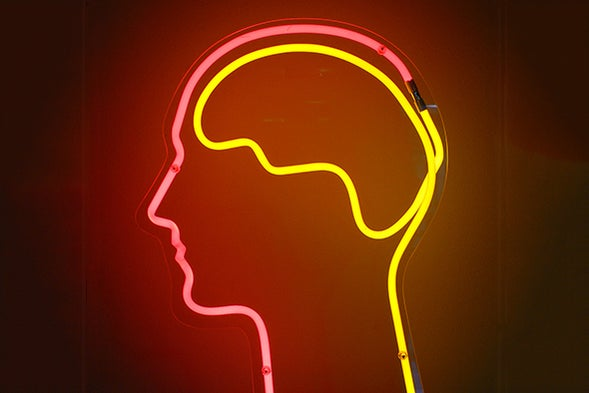 You Can Increase Your Intelligence: 5 Ways to Maximize Your Cognitive  Potential