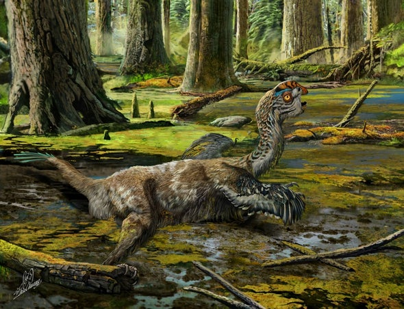 Paleo Profile: The Mud Dragon