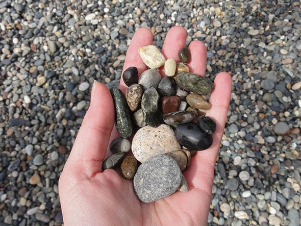 Shingle Beaches: Pebble Paradises