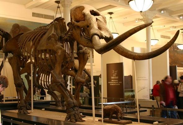 Talking Crap about Mastodons