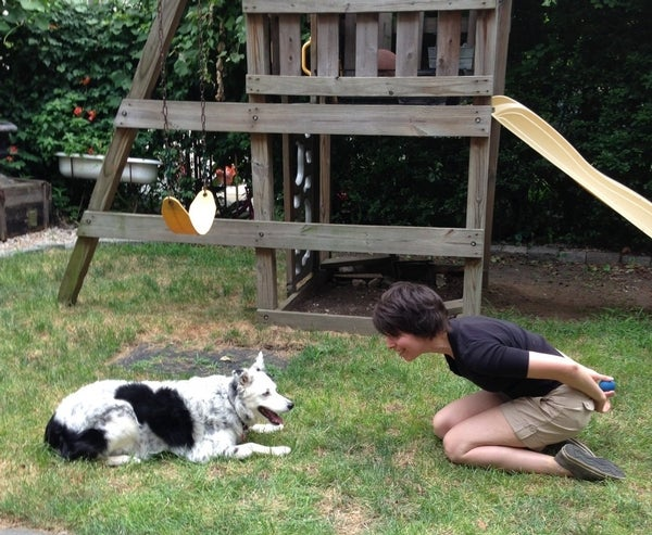 Behind the Scenes: How a Dog Learned More Than a Thousand Words [Video]