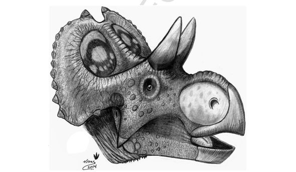 Paleo Profile: Mexico's Ancient Horned Face