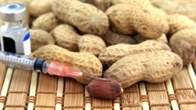 Allergy-Free Peanuts? Not So Fast
