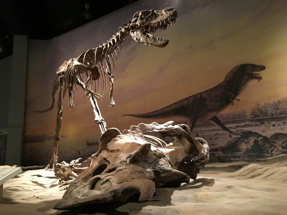 Terrible Teeth Reveal How Dinosaurs Chomped