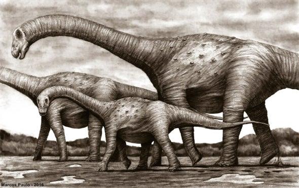 Paleo Profile: The Mystery Titanosaur