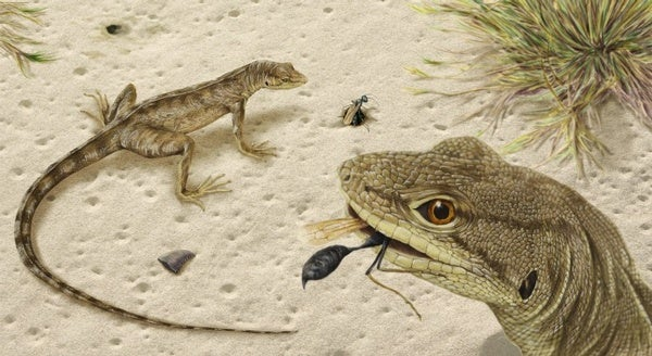 Paleo Profile: Mighty Traveler from Egg Mountain