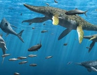 Plesiosaur Peril — the lifestyles and behaviours of ancient marine reptiles