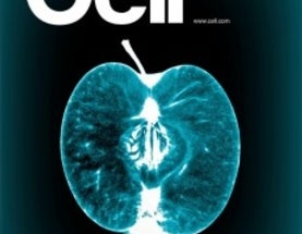 New Issue of the Journal Cell is All About Food