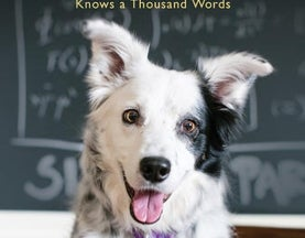 How a Dog Aced the Verbal Section of the Canine SAT