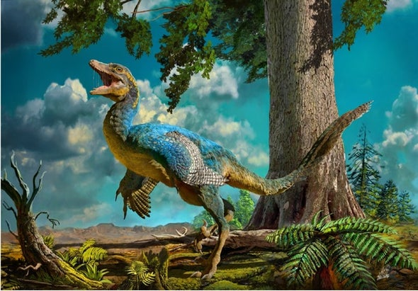 Paleo Profile: The Dalian Lizard