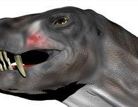 Did This Protomammal Have a Venomous Bite?
