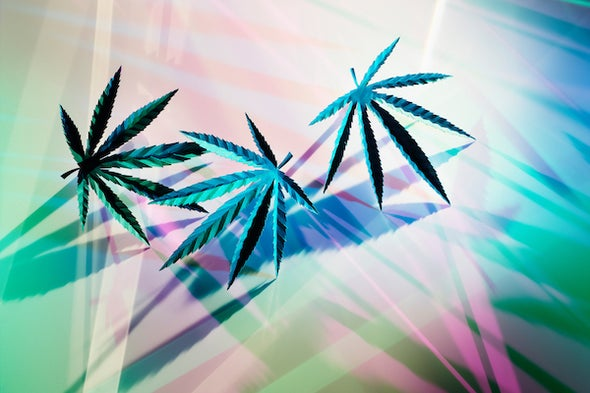 Is Cannabis Good or Bad for Mental Health?