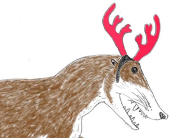 A Tet Zoo Christmas