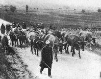 This Week in World War I: September 5, 1914