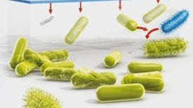A Visual Guide to Antibiotic Resistance