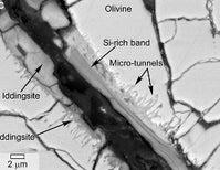 Rock-Eating Martian Microbes?