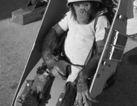 "Before Manned Spaceflight There Was ""Chimpanned"" Spaceflight"