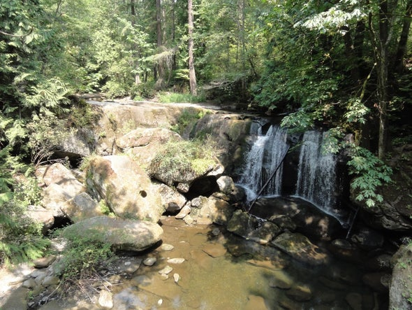 Drool-Worthy Geology at Whatcom Falls Park