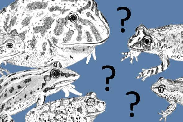Nonstandard Ideas in Amphibian Evolution, Part 1
