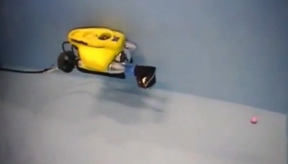 Lending a Robotic Helping Hand in Extreme Environments [Video]