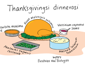 Thanksgiving Species