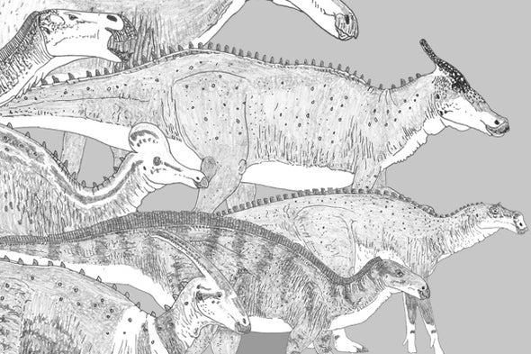 Eberth and Evans's <i>Hadrosaurs</i>, a Book Review, Part 2