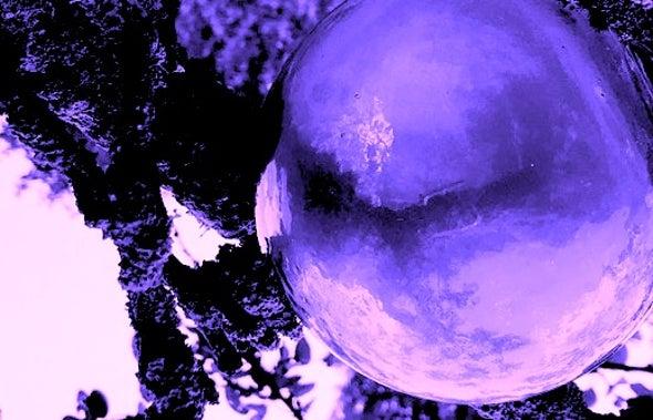 Tardigrades Were Already on the Moon